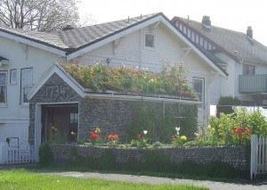 Create an Eco-Friendly Home