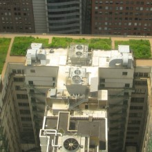 Green roof construction details, design, and benefits