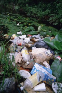 litter-pollution-in-wetland-1