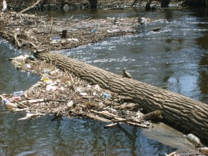 water-pollution-habitat
